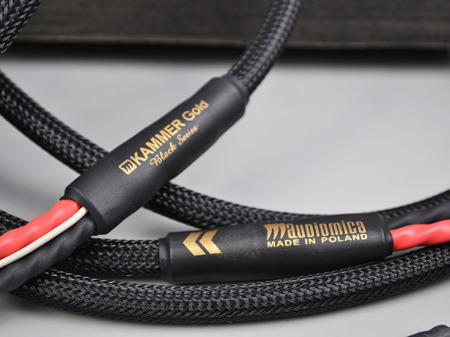 Audiomica Kammer Gold - single-wire- banany